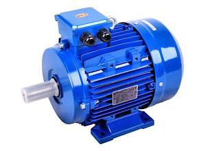 Generatori a magneti permanenti brushless sincroni for Stabilizzatore di tensione 220v 3kw prezzi